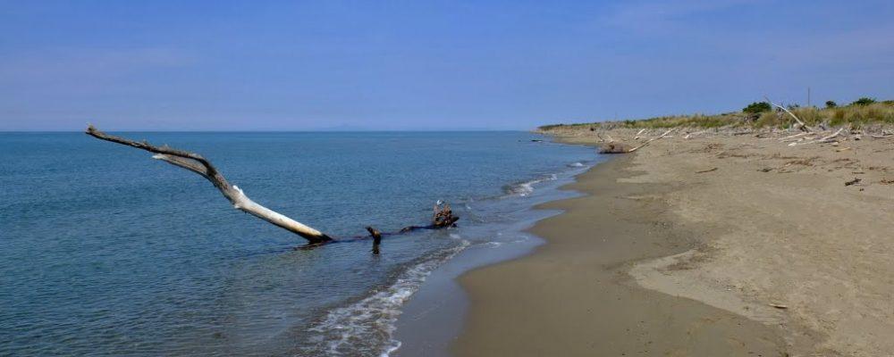 vacanze in maremma - spiaggia alberese