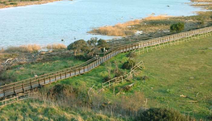 agriturismo vicino all'alberese - fiume ombrone maremma