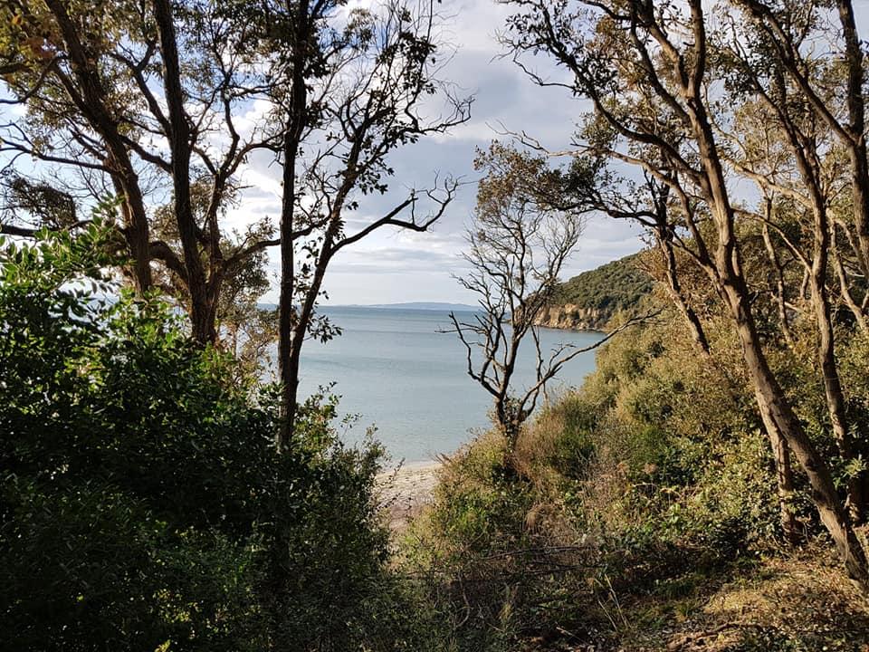 mare itinerari agriturismi alberese parco della maremma